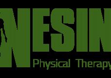 Nesin Logo